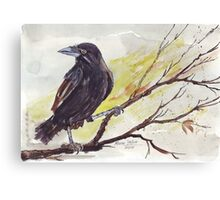 Crow on a bough Canvas Print