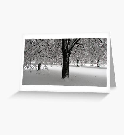 Snow! Greeting Card