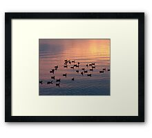 Down For The Night Framed Print