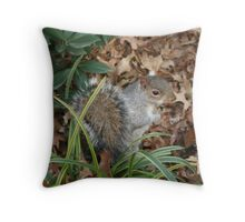 REDREAMING UNION PARK Throw Pillow