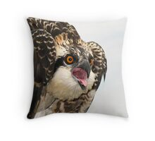 Osprey Emotions Throw Pillow