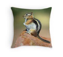 Cheeky Lil' Fellow Throw Pillow