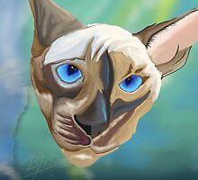 Siamese cat done in sketch club by BruceFuller