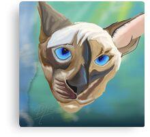 Siamese cat done in sketch club Canvas Print