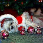 Santa's Helper by Dennis Begnoche Jr.