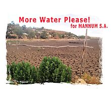 More water please for Mannum, S.A. Photographic Print