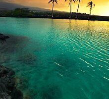 Sunset at Kiholo Bay by Yves Rubin