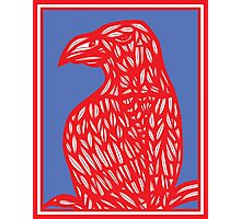 Sneathen Eagle Hawk Red Blue Photographic Print