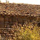 Old Village by Orasis Dimensional