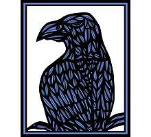 Yaw Eagle Hawk Blue Black Photographic Print