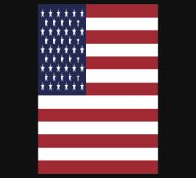 USA Flag, American Style, Stars And Stripes, Super Resolution Baby Tee