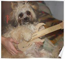 "Guitar Playin"" Muffy! Poster"