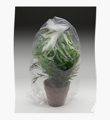 plant suffocated Poster
