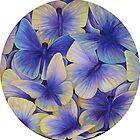 Hydrangea Butterflies by carrysmith