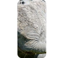 AFTER A MUD BATH, THE BABY ELEPHANT  - THE AFRICAN ELEPHANT – Loxodonta Africana iPhone Case/Skin