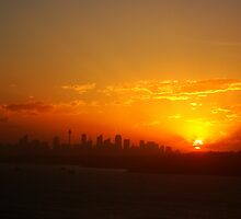 Sunset over Sydney by Of Land & Ocean - Samantha Goode