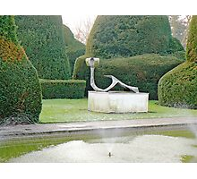 The Topiary Gardens Photographic Print