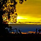 Wimmera Sunsets by Jennifer Craker