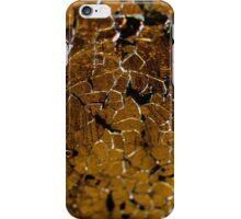 Cracks iPhone Case/Skin