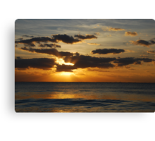 pure gold Canvas Print