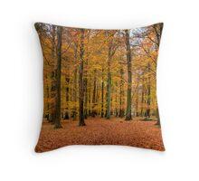 Fall in Dyrehaven, Denmark Throw Pillow