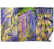Wisteria Blooming - Triptych Poster