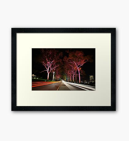 Kings Park Traffic  Framed Print