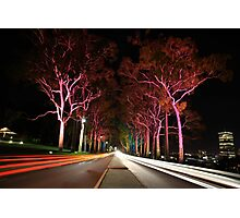 Kings Park Traffic  Photographic Print