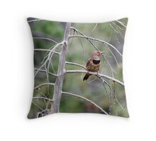 Northern Flicker - 5108 Throw Pillow