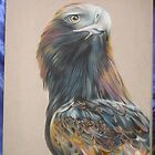 Wedge Tailed Eagle Portrait by Lyrebird