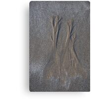 trees in the sand Canvas Print