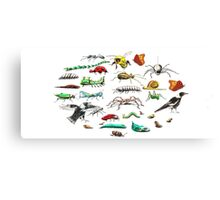 It's a Bugs life Canvas Print