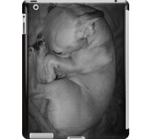 Curled up Sleeping Puppy iPad Case/Skin