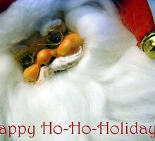 Happy Ho-Ho-Holidays! by Catherine Mardix