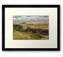 Dartmoor Vista Framed Print