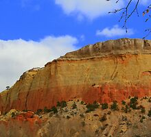 Rock Strata at Ghost Ranch by Laurel Talabere