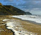 Charmouth beach the wider view by SWEEPER