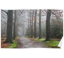 Walking in the misty December forest Poster