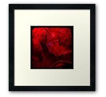 Ttv: Dirty Red Rose Framed Print