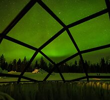 Inside the Glass Igloo by Kristin Repsher