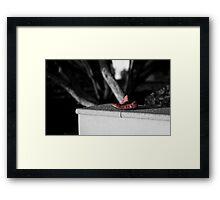Lost Property Framed Print