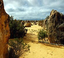The Pinnacles, Nambung National Park, Cervantes, Western Australia by Adrian Paul