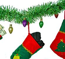 What's In Your Stocking? by Maria Dryfhout