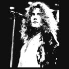 ROBERT PLANT-ROCK AND ROLL by OTIS PORRITT