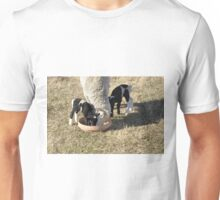 Sheep. Unisex T-Shirt