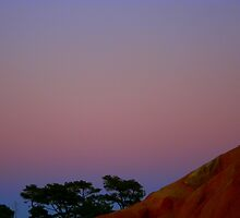 Moonrise at Torrey Pines Cliffs by Laurel Talabere