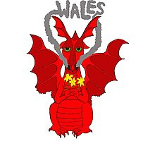 Welsh Dragon with daffodils Photographic Print
