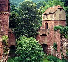 Heidelberg Castle by Shaina Haynes