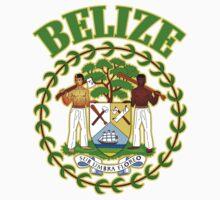 Belize Coat of Arms by ukedward
