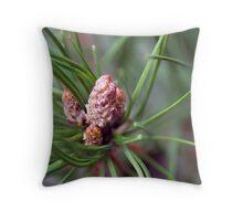 Bishop Pine Throw Pillow